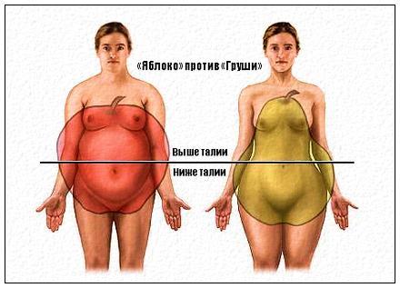 Способствует ли грейпфрут похудению